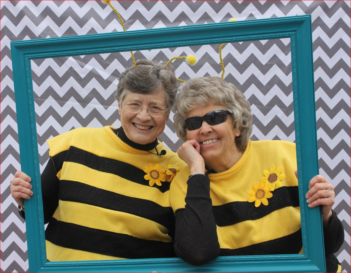MEE.SJR.Bees.2013